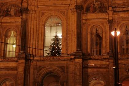 Weihnachtsbaum Muenchen Parlament